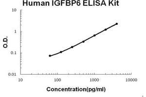 Image no. 1 for Insulin-Like Growth Factor Binding Protein 6 (IGFBP6) ELISA Kit (ABIN1672866)