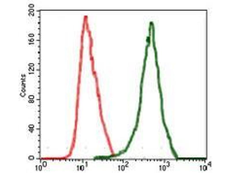 Flow Cytometry (FACS) image for anti-RAF1 antibody (V-Raf-1 Murine Leukemia Viral Oncogene Homolog 1) (ABIN969560)