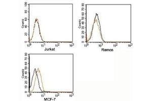 Flow Cytometry (FACS) image for Rabbit IgG isotype control (PE) (ABIN3023749)