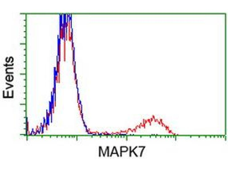 Flow Cytometry (FACS) image for anti-MAPK7 antibody (Mitogen-Activated Protein Kinase 7) (ABIN2454052)