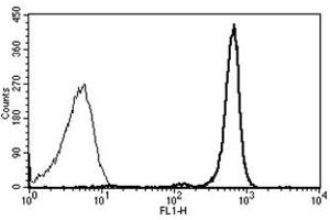 Flow Cytometry (FACS) image for anti-Protein tyrosine Phosphatase, Receptor Type, C (PTPRC) antibody (FITC) (ABIN1106397)