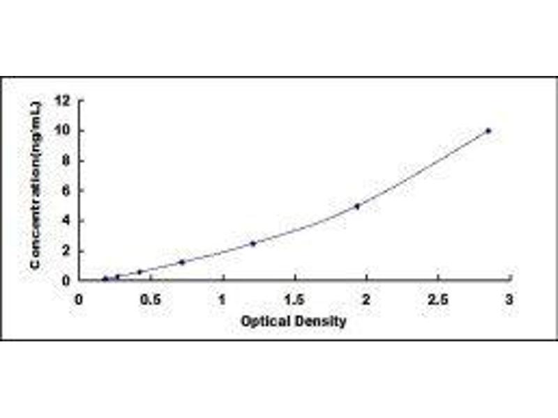 Charcot-Leyden Crystal Protein (CLC) ELISA Kit