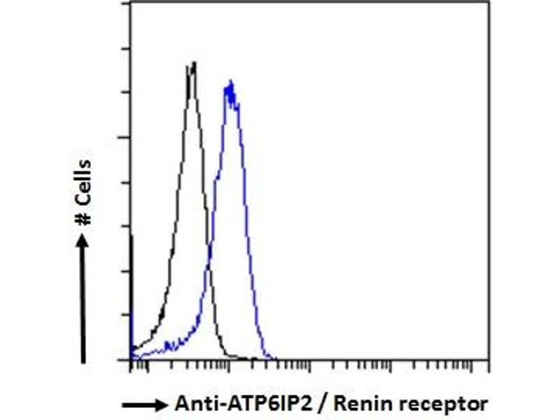 Flow Cytometry (FACS) image for anti-ATPase, H+ Transporting, Lysosomal Accessory Protein 2 (ATP6AP2) (C-Term) antibody (ABIN185092)