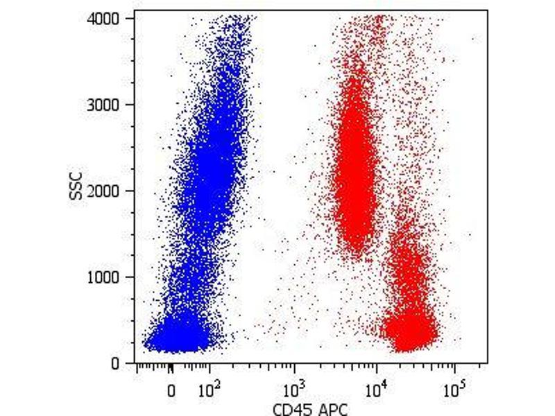 Image no. 1 for anti-Protein tyrosine Phosphatase, Receptor Type, C (PTPRC) antibody (APC) (ABIN94131)