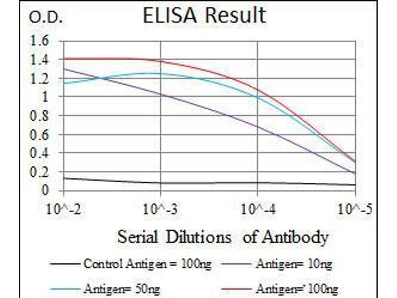 ELISA image for anti-Insulin-Like Growth Factor 2 (IGF2) (AA 25-180) antibody (ABIN4880781)