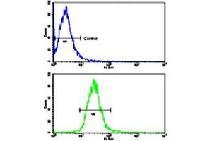 Flow Cytometry (FACS) image for anti-Toll-Like Receptor 6 (TLR6) antibody (ABIN544511)