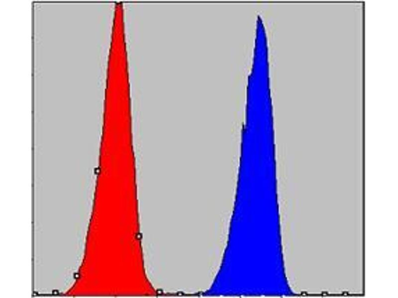 Flow Cytometry (FACS) image for anti-conserved Helix-Loop-Helix Ubiquitous Kinase (CHUK) antibody (ABIN969056)