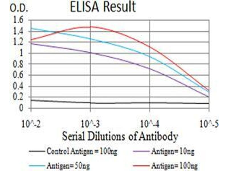 ELISA image for anti-Cyclin D1 (CCND1) (AA 167-295) antibody (ABIN5542302)