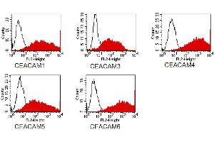 Flow Cytometry (FACS) image for anti-CEACAM1/3/5/6 (CEACAM1/3/5/6) antibody (ABIN108729)