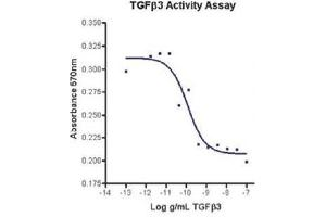 Image no. 2 for Transforming Growth Factor, beta 3 (TGFB3) (Active) protein (ABIN1525761)