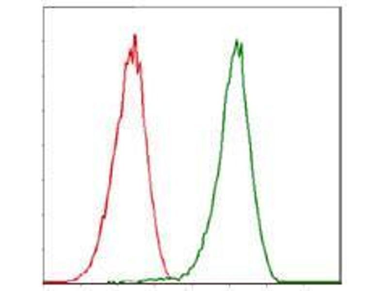 Flow Cytometry (FACS) image for anti-Cyclin-Dependent Kinase 2 (CDK2) antibody (ABIN4880634)