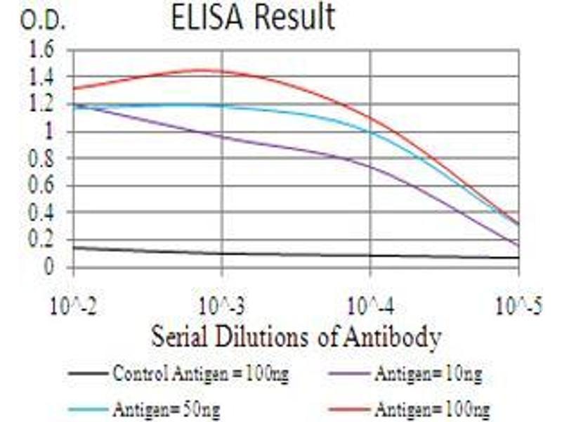 ELISA image for anti-Bone Morphogenetic Protein 2 (BMP2) (AA 283-396) antibody (ABIN5542284)