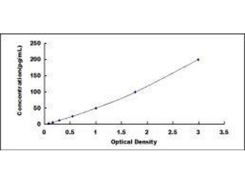 Nerve Growth Factor (NGF) ELISA Kit