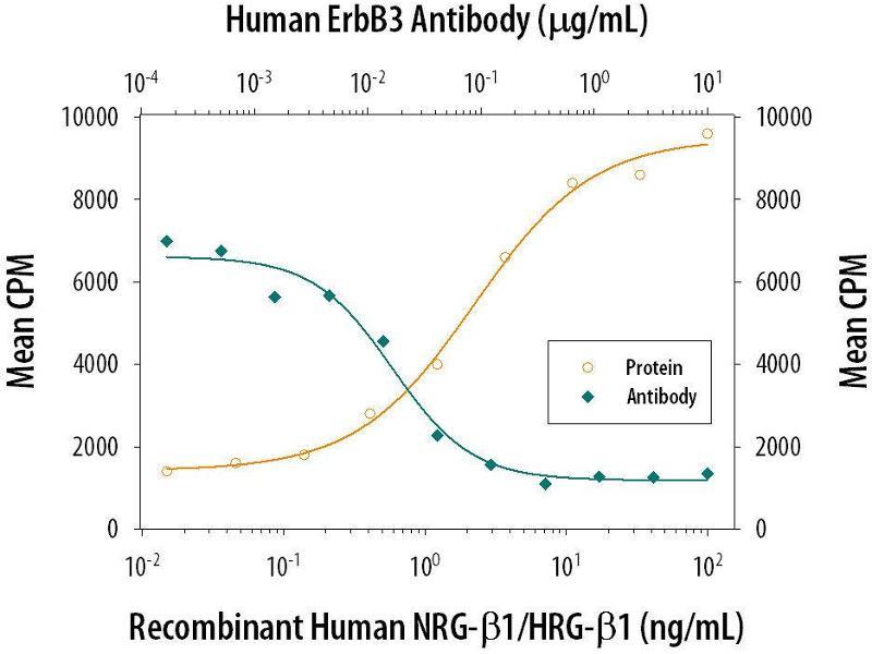 Neutralization (Neut) image for anti-ERBB3 Antikörper (V-Erb-B2 Erythroblastic Leukemia Viral Oncogene Homolog 3 (Avian)) (AA 20-643) (ABIN4899526)