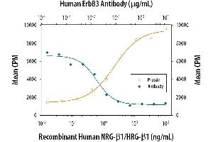 Neutralization (Neut) image for anti-V-Erb-B2 Erythroblastic Leukemia Viral Oncogene Homolog 3 (Avian) (ERBB3) (AA 20-643) antibody (ABIN4899526)
