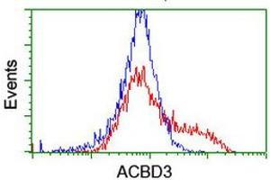 Image no. 14 for anti-Acyl-CoA Binding Domain Containing 3 (Acbd3) antibody (ABIN1498415)
