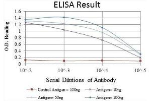 ELISA image for anti-LIM and Senescent Cell Antigen-Like Domains 1 (LIMS1) antibody (ABIN1108043)