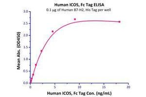 Image no. 2 for Inducible T-Cell Co-Stimulator Ligand (ICOSLG) (AA 19-258) (Active) protein (His tag) (ABIN2181242)