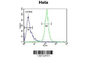 Image no. 3 for anti-Peptidylprolyl Isomerase C (Cyclophilin C) (PPIC) (AA 61-89), (Center) antibody (ABIN653304)