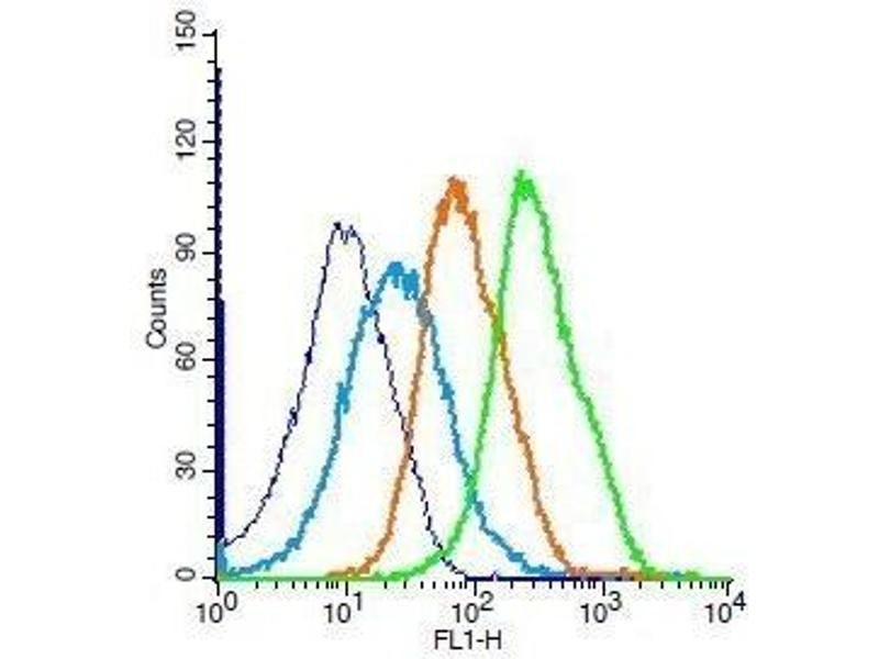 Flow Cytometry (FACS) image for anti-BCL2 antibody (B-Cell CLL/lymphoma 2) (AA 169-211) (ABIN707156)