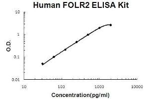 Image no. 1 for Folate Receptor 2 (Fetal) (FOLR2) ELISA Kit (ABIN5510703)