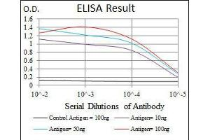 ELISA image for anti-EIF4B antibody (Eukaryotic Translation Initiation Factor 4B) (ABIN969517)