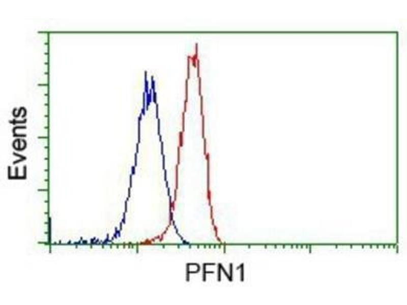 Flow Cytometry (FACS) image for anti-Profilin 1 (PFN1) antibody (ABIN4347407)