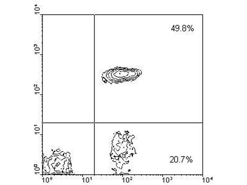image for anti-CD4 Molecule (CD4) antibody (PE) (ABIN135511)