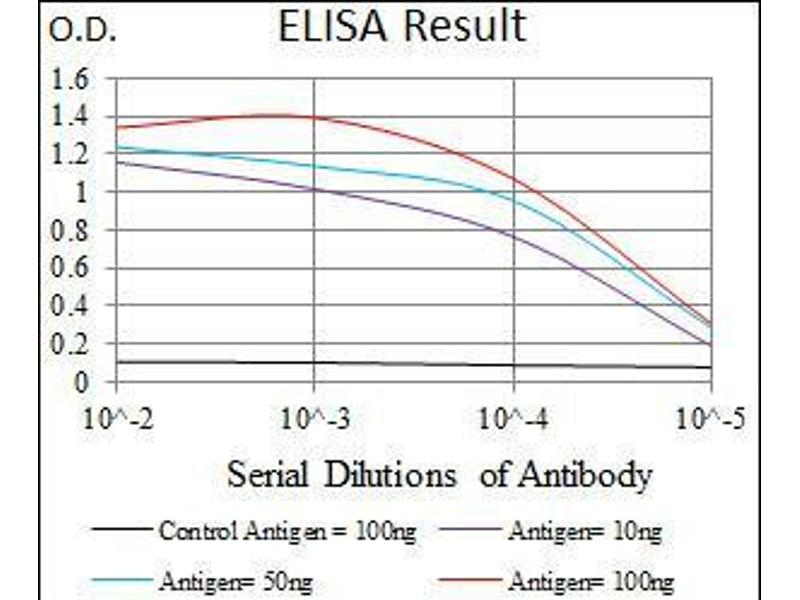 ELISA image for anti-Hyaluronan Synthase 2 (HAS2) (AA 67-170) antibody (ABIN1098124)