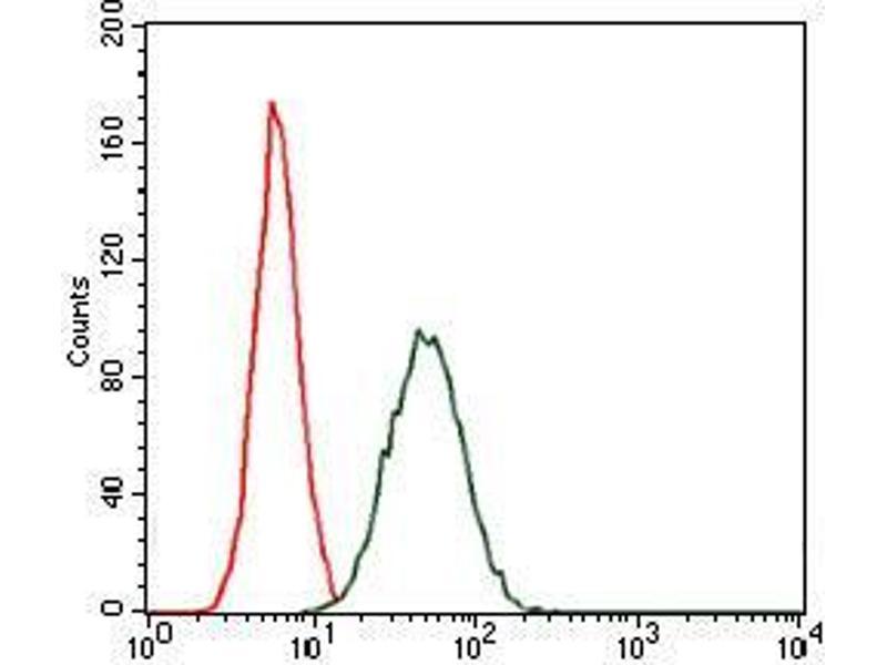 Flow Cytometry (FACS) image for anti-CCAAT/enhancer Binding Protein (C/EBP), alpha (CEBPA) antibody (ABIN969048)