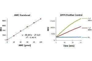 Image no. 1 for DPP4 Activity Fluorometric Assay Kit (ABIN809666)