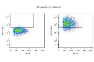 Flow Cytometry (FACS) image for anti-Death Inducer-Obliterator 1 (DIDO1) antibody (ABIN439156)