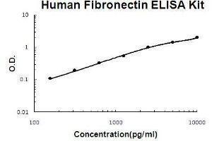 Image no. 1 for Fibronectin 1 (FN1) ELISA Kit (ABIN411271)