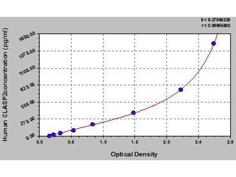 Cytoplasmic Linker Associated Protein 2 (CLASP2) ELISA Kit
