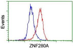 image for anti-Zinc Finger Protein 280A (ZNF280A) (AA 1-333) antibody (ABIN1490749)