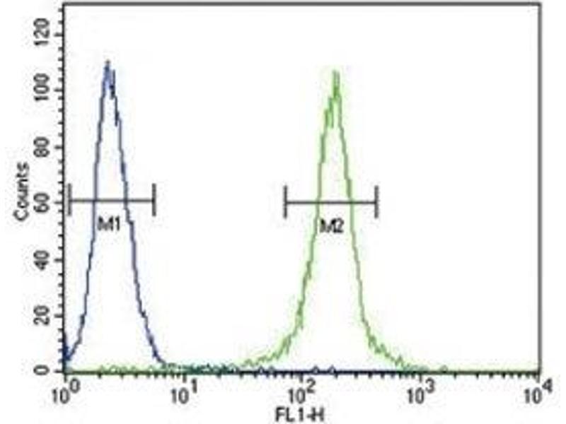 Flow Cytometry (FACS) image for anti-Anti-Mullerian Hormone (AMH) (AA 424-451) antibody (ABIN3029981)