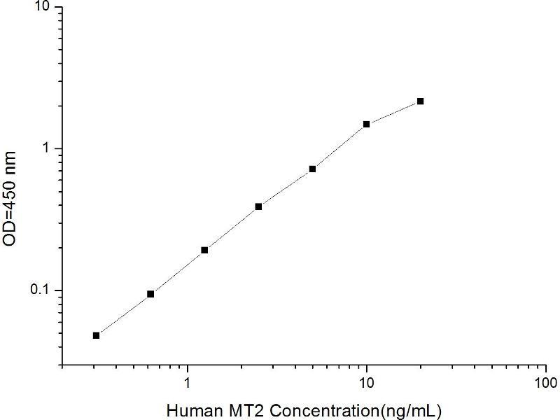 Metallothionein 2 (MT2) ELISA Kit (2)