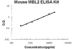 Image no. 1 for Mannose-Binding Lectin (Protein C) 2, Soluble (MBL2) ELISA Kit (ABIN6719820)