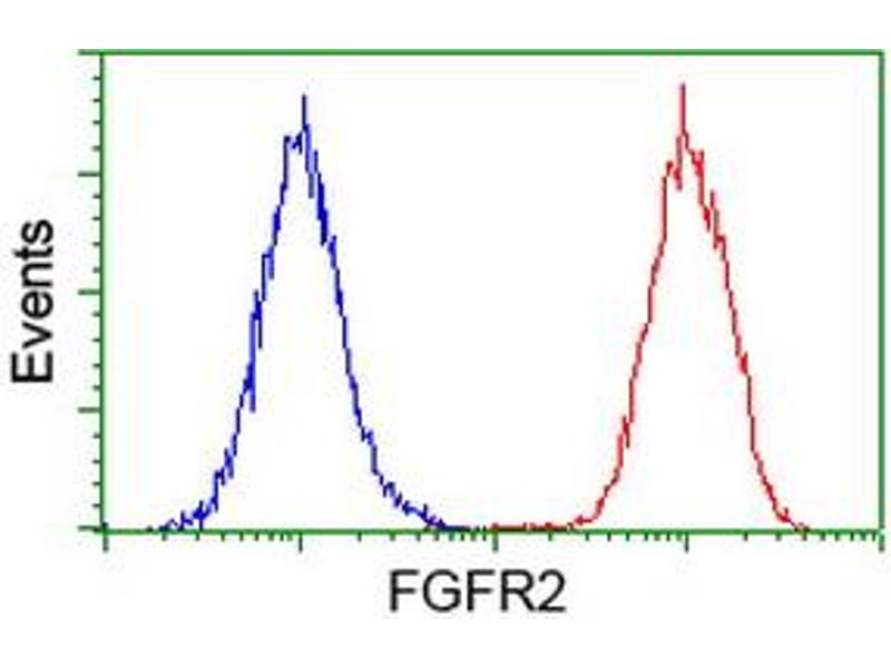 Flow Cytometry (FACS) image for anti-Fibroblast Growth Factor Receptor 2 (FGFR2) antibody (ABIN2454529)