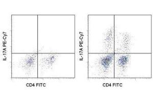 Flow Cytometry (FACS) image for anti-IL17A antibody (Interleukin 17A)  (PE-Cy7) (ABIN2680348)