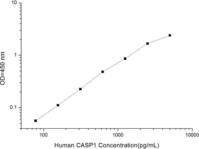 Caspase 1 (CASP1) ELISA Kit (2)