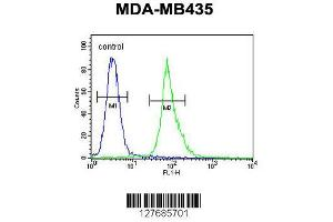 Flow Cytometry (FACS) image for anti-AKT antibody (V-Akt Murine Thymoma Viral Oncogene Homolog 1) (AA 282-309) (ABIN654500)