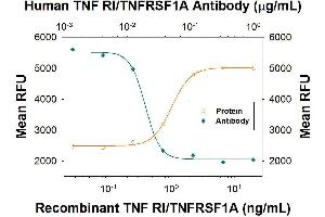 Neutralization (Neut) image for anti-TNFRSF1A antibody (Tumor Necrosis Factor Receptor Superfamily, Member 1A) (ABIN4900865)
