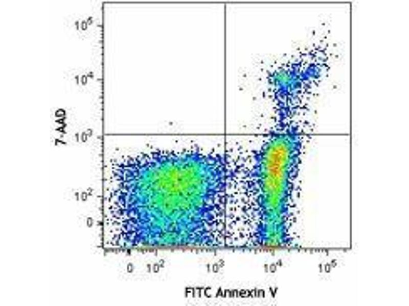Flow Cytometry (FACS) image for FITC Annexin V Apoptosis Detection Kit with 7-AAD (ABIN2669212)