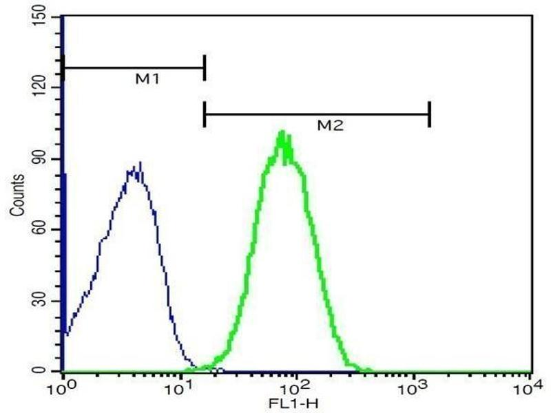 Flow Cytometry (FACS) image for anti-Toll-Like Receptor 4 (TLR4) (AA 780-830) antibody (ABIN736491)