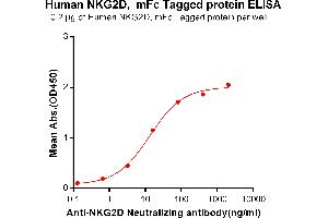 Image no. 1 for Killer Cell Lectin-Like Receptor Subfamily K, Member 1 (KLRK1) protein (mFc Tag) (ABIN6961134)