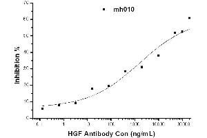 image for anti-Hepatocyte Growth Factor (Hepapoietin A, Scatter Factor) (HGF) antibody (ABIN2682078)