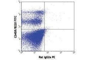 Flow Cytometry (FACS) image for anti-FLT3 antibody (Fms-Related tyrosine Kinase 3)  (PE) (ABIN2663013)