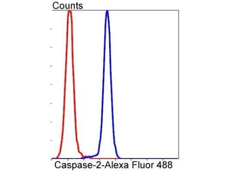 Flow Cytometry (FACS) image for anti-Caspase 2, Apoptosis-Related Cysteine Peptidase (CASP2) (AA 150-350) antibody (ABIN5951607)
