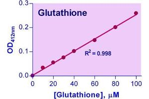 Biochemical Assay (BCA) image for Glutathione Assay Kit (ABIN1000264)